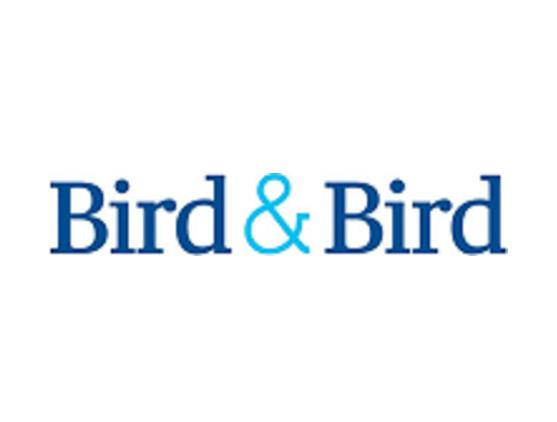 Bird new