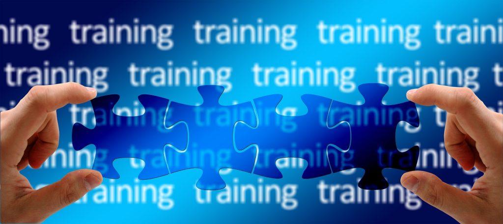 Definition of training?